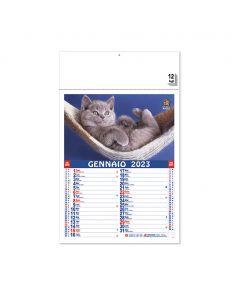 PET - calendari cani e gatti