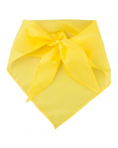 PLUS - foulard triangolare